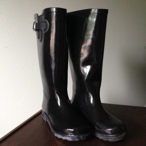 Black rainboots. --SierraWest, gifted by my mama